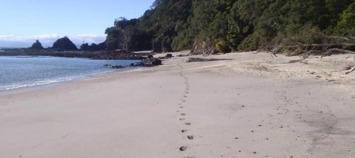 Tois Beach Image